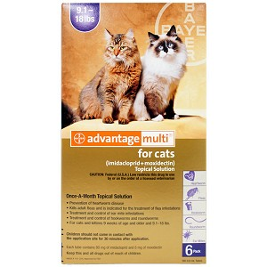 Advantage Multi Rx for Cats, 9.1-18 lbs, 6 Month (Purple)