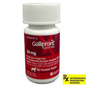 Rx Galliprant Tablets