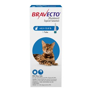 Rx, Bravecto Topical Solution for Medium Cats, 6.2-13.8 lbs