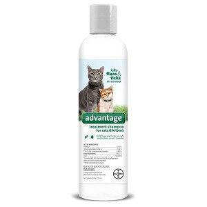 Advantage Treatment Shampoo for Cats and Kittens