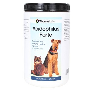 Acidophilus Forte Powder, 16 Ounce Jar