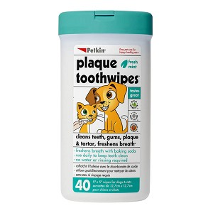 Toothwipes 40 Count