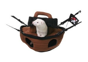 Pirate Ship For Ferrets